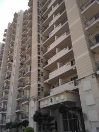 1225 sqft, 2 bhk Apartment in Bestech Park View Delight Sector 7 Dharuhera, Dharuhera at Rs. 36.0000 Lacs