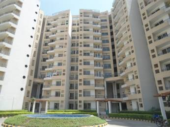 1445 sqft, 2 bhk Apartment in MVL Coral Sector 18 Bhiwadi, Bhiwadi at Rs. 30.0000 Lacs