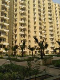1025 sqft, 2 bhk Apartment in Krish Aura Sector 18 Bhiwadi, Bhiwadi at Rs. 25.0000 Lacs