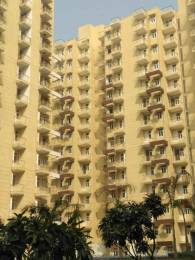 1230 sqft, 3 bhk Apartment in Krish Aura Sector 18 Bhiwadi, Bhiwadi at Rs. 30.0000 Lacs