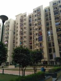 1450 sqft, 3 bhk Apartment in Cosmos Chinar Apartment Sector 18 Bhiwadi, Bhiwadi at Rs. 25.0000 Lacs