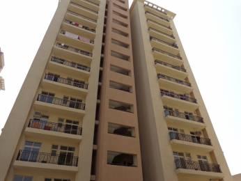 1620 sqft, 3 bhk Apartment in Nimai Greens Sector 22 Bhiwadi, Bhiwadi at Rs. 42.0000 Lacs
