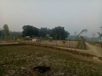 1000 sqft, Plot in Builder vashu home path Raibareilli Sultanpur Road Nagram Road Mohanlalganj, Lucknow at Rs. 2.7500 Lacs