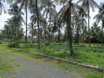 2000 sqft, Plot in Builder plot for sale Virar West, Mumbai at Rs. 24.0000 Lacs