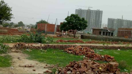 900 sqft, Plot in Builder Project Sector 81, Noida at Rs. 14.0000 Lacs