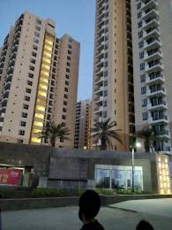 1065 sqft, 2 bhk Apartment in Nirala Aspire Sector 16 Noida Extension, Greater Noida at Rs. 8500