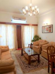 800 sqft, 1 bhk Apartment in Builder Gulmohar Park 1BHK Fully Furnished Gulmohar park, Delhi at Rs. 55000