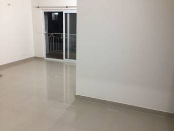 1250 sqft, 2 bhk Apartment in Builder Project Amruthahalli, Bangalore at Rs. 20000