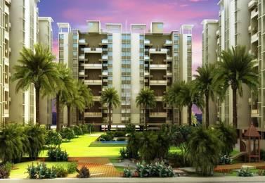 1050 sqft, 2 bhk BuilderFloor in Atria Grande Project A Handewadi, Pune at Rs. 48.0000 Lacs