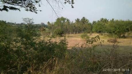 4000 sqft, Plot in MS M S Parivaar Hosur, Bangalore at Rs. 16.0000 Lacs