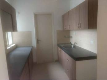 2160 sqft, 3 bhk Apartment in Vatika The Seven Lamps Sector 82, Gurgaon at Rs. 21000