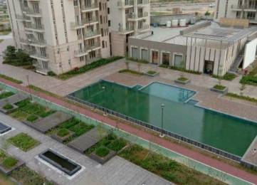 2075 sqft, 3 bhk Apartment in Conscient Heritage Max Sector 102, Gurgaon at Rs. 20000