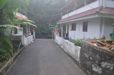 1600 sqft, 3 bhk Villa in Builder Project Pala, Kottayam at Rs. 50.0000 Lacs