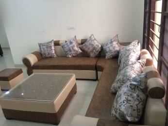 1800 sqft, 3 bhk Apartment in JTPL Flora Designer Floors Sector 115 Mohali, Mohali at Rs. 33.9000 Lacs