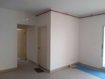 1325 sqft, 2 bhk Apartment in GM Daffodils Jalahalli, Bangalore at Rs. 22000