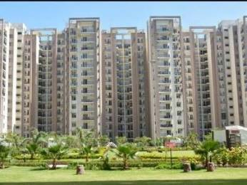 1910 sqft, 3 bhk Apartment in Builder Project Chandigarh, Chandigarh at Rs. 18500