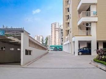 1728 sqft, 3 bhk Apartment in Builder Project Sector 20 Panchkula, Chandigarh at Rs. 17500