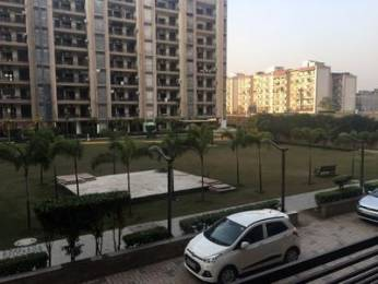 1027+ 3 BHK Apartments / Flats for rent near Liberty
