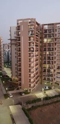1685 sqft, 3 bhk Apartment in Builder Sushma Elite Cross Panchkula Sector 20 Panchkula, Chandigarh at Rs. 15000