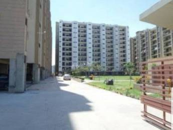 1685 sqft, 3 bhk Apartment in Builder Project Ambala Highway, Chandigarh at Rs. 14000