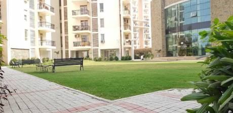 1840 sqft, 3 bhk Apartment in Builder Project Peermachhala, Chandigarh at Rs. 17000