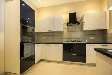 1850 sqft, 3 bhk Apartment in Builder Project Sector 20 Panchkula, Chandigarh at Rs. 1.0000 Cr