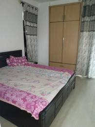 1750 sqft, 3 bhk Apartment in Soni KSB City Heights Sector 20, Panchkula at Rs. 37.0000 Lacs