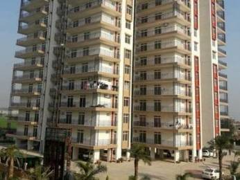 2630 sqft, 5 bhk Apartment in Builder gvt orvis grand Ambala Chandigarh Expressway, Zirakpur at Rs. 30000