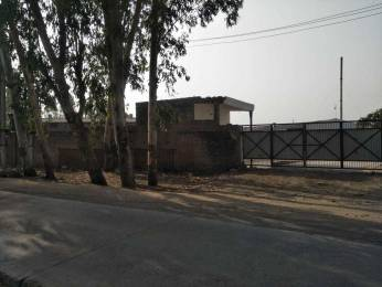 900 sqft, Plot in Builder Project Sector 82, Faridabad at Rs. 5.6000 Lacs