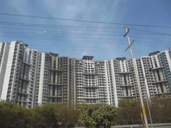 1446 sqft, 3 bhk Apartment in PAN Realtors Pvt. Ltd. Amrapali PAN Oasis Apartments Sector 70, Noida at Rs. 64.0000 Lacs