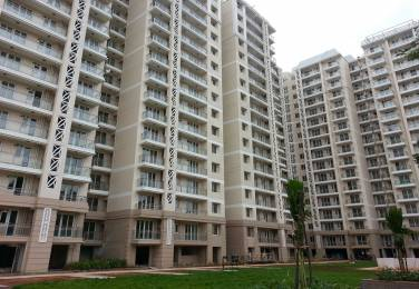 2700 sqft, 4 bhk Apartment in DLF Commanders Court Egmore, Chennai at Rs. 3.7500 Cr