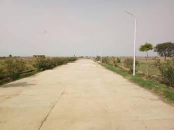 900 sqft, Plot in Builder Naturre Valley New Era Group Yamuna Expressway, Greater Noida at Rs. 9.5000 Lacs