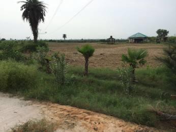 1458 sqft, Plot in New Era Nature Valley Near Jewar Airport At Yamuna Expressway, Greater Noida at Rs. 14.5800 Lacs