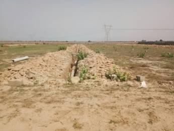 1008 sqft, Plot in New Era Nature Valley Near Jewar Airport At Yamuna Expressway, Greater Noida at Rs. 10.0000 Lacs