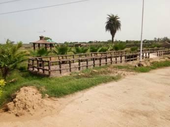 8262 sqft, Plot in New Era Nature Valley Near Jewar Airport At Yamuna Expressway, Greater Noida at Rs. 95.0000 Lacs