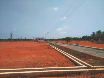 1485 sqft, Plot in Builder brundavanam Pithapuram Kakinada Road, Kakinada at Rs. 5.5000 Lacs