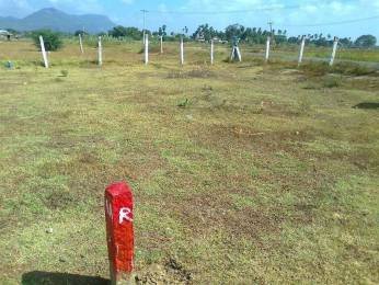 2695 sqft, Plot in Builder Sale my Own plot Kallanthiri, Madurai at Rs. 6.0000 Lacs