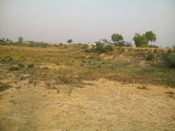1000 sqft, Plot in Shine Nature Valley Mohanlalganj, Lucknow at Rs. 3.1000 Lacs