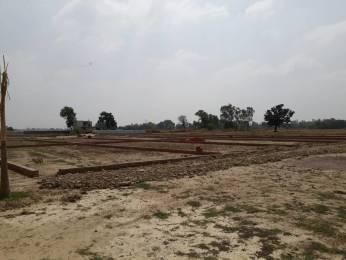 1000 sqft, Plot in Builder Tashi Patna Dariyapur Road, Patna at Rs. 6.5000 Lacs
