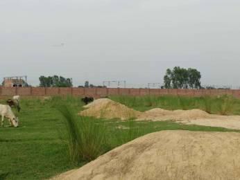 1000 sqft, Plot in Shine Xhevahire City LDA Colony, Lucknow at Rs. 10.0000 Lacs