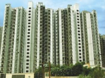 1875 sqft, 4 bhk Apartment in Builder Project Logix Blossom County, Noida at Rs. 18000