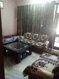 1359 sqft, 3 bhk BuilderFloor in Builder Project Sector 22, Chandigarh at Rs. 92.0000 Lacs