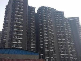 550 sqft, 1 bhk Apartment in Sunrays 63 Golf Drive Sector 63, Gurgaon at Rs. 14.8200 Lacs