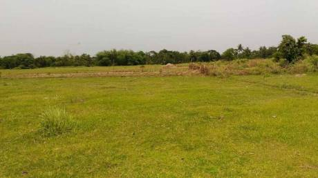 1800 sqft, Plot in Builder Project Sonarpur, Kolkata at Rs. 3.0000 Lacs