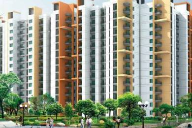 965 sqft, 2 bhk Apartment in BCC Bharat City Indraprastha Yojna, Ghaziabad at Rs. 28.5000 Lacs