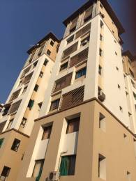 1100 sqft, 3 bhk Apartment in Satva Gotri Gotri, Vadodara at Rs. 10000