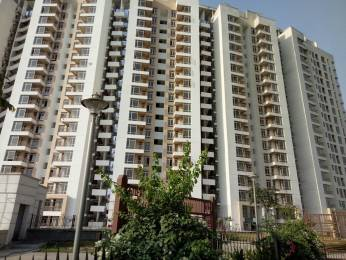 850 sqft, 2 bhk Apartment in Jaypee Kosmos Sector 134, Noida at Rs. 9500