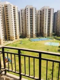 1150 sqft, 3 bhk Apartment in Jaypee Kosmos Sector 134, Noida at Rs. 12000