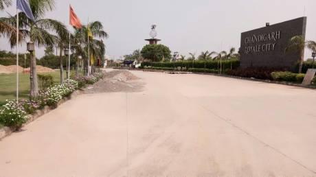 900 sqft, Plot in Balaji Royale City Plots Bir Chhat, Zirakpur at Rs. 15.0000 Lacs