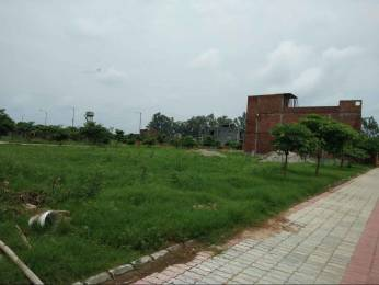 1206 sqft, Plot in Ansal Housing Builders Town Modi Puram, Meerut at Rs. 28.5000 Lacs